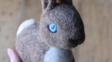 Lisa Jordan bunny