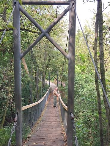 Falls Trail Bridge