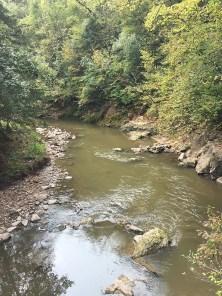 Ramsey Creek below the falls.