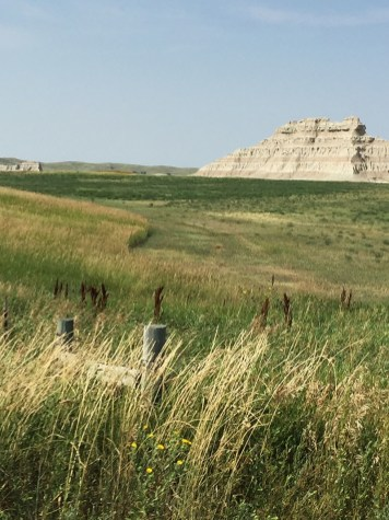 Limestone and grasslands on the panhandle.