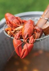 Crawfish-Feast_Outdoor-Summer-Entertaining_Crawfish