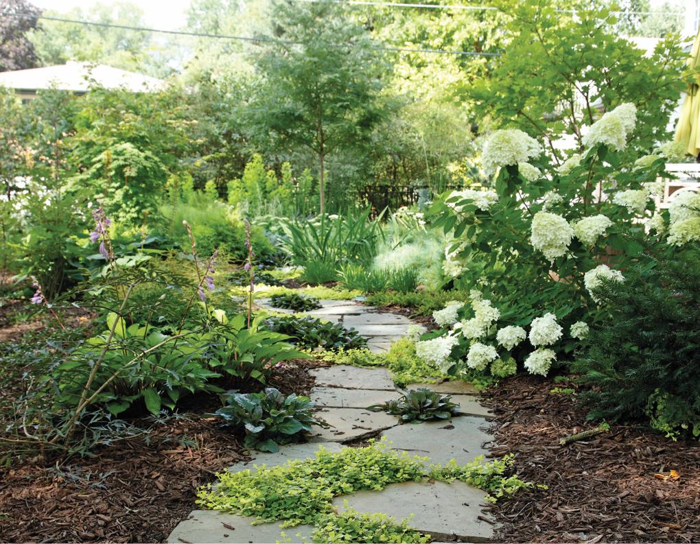 Outdoors_Garden_Hardscape_Path