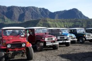 Fleet of jeeps (I want one!)
