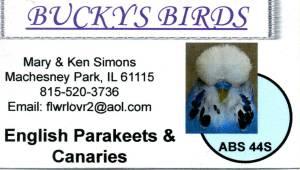 BUCKYS BIRDS