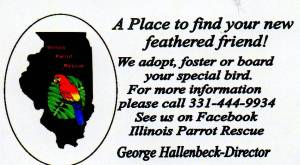 ILLINOIS PARROT RESCUE