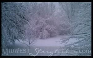World of White www.midweststoryteller.com