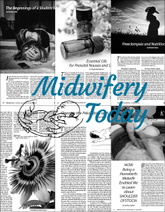 Midwifery Today Individual Articles