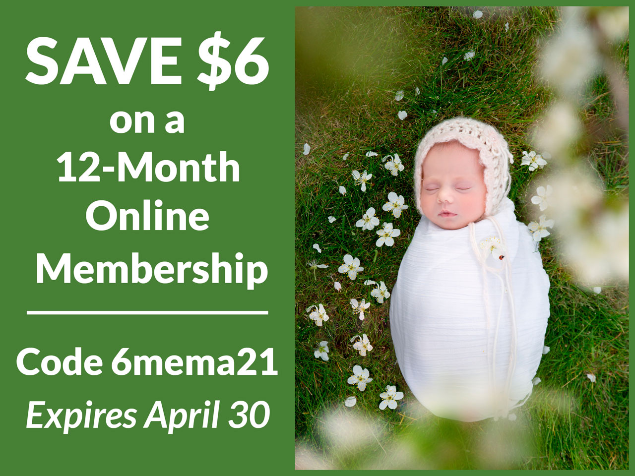 Save $6 on a one-year membership