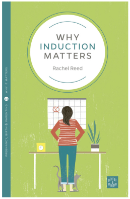 Why_Induction_Matters_-_Pinter___Martin_Publishers