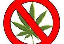 2014-03-08-kampania-antynarkotykowa@ZSP@Glogow-1347282274-stop-narkotykom-naszepiaseczno
