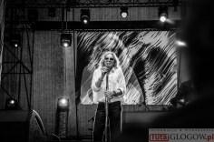 2015-06-08 Trzeci dzień dni Głogowa-Perfect oraz Marysia Starosta i Sokół @Bulwar Nadodrzański (fot.A.Karbowiak)-24
