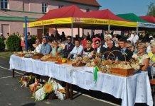 2015-09-02 Święto Plonów w Żukowicach @Kłoda (fot. UG Żukowice)