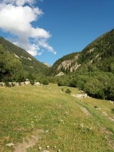 apiculteur de montagne, apiculteur des Pyrénées, apiculteur warré, apiculteur abeille noire, apiculteur andorre