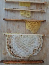 miel avec cire, miel en morceau, miel en breche, breche de miel, rayon de miel acheter, miel entier, miel au couteau, miel avec alveole