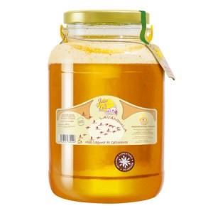 Miel de Lavanda 5,3 kg. (Gallocanta)