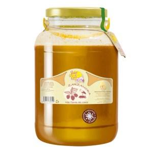 Miel de Zarzamora 5,3 kg. (Tierras de Limia)