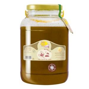 Miel de Roble 5,3 kg. (Tierras de Limia)
