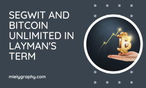 SegWit and Bitcoin Unlimited in Layman's Term