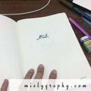 bullet journal setup for january : Mielygraphy