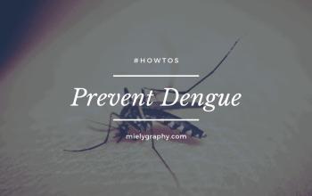 Prevent Dengue Today