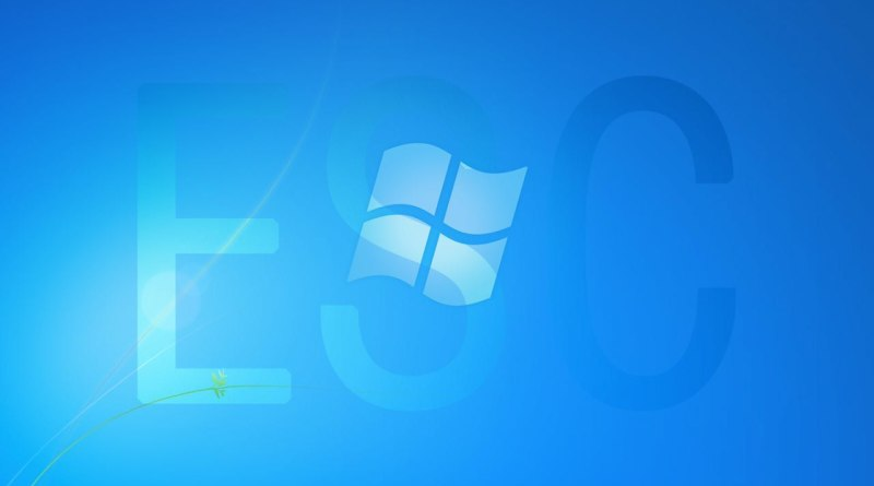 licencia de windows 7