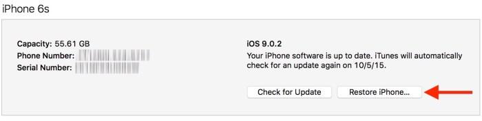 Escape Digital -Restore-iPhone-in-iTunes
