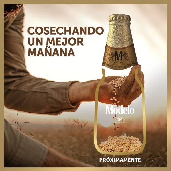 Grupo Modelo lanza edición especial con cebada comprada en apoyo a los agricultores