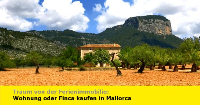 Mallorca: Immobilie kaufen - Immoilienmarkt, Chancen, Risiken und Wissenswertes