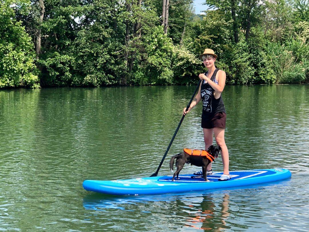 mietSUP-stand-up-paddling-sup-hund-kurs-camping-sand-am-main-01