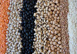 Legumbres, básicas en la alimentación fenicia y mediterránea