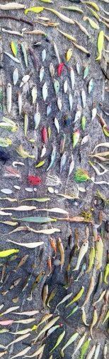 leurre deccrochés accrochés mer branche cailloux algues