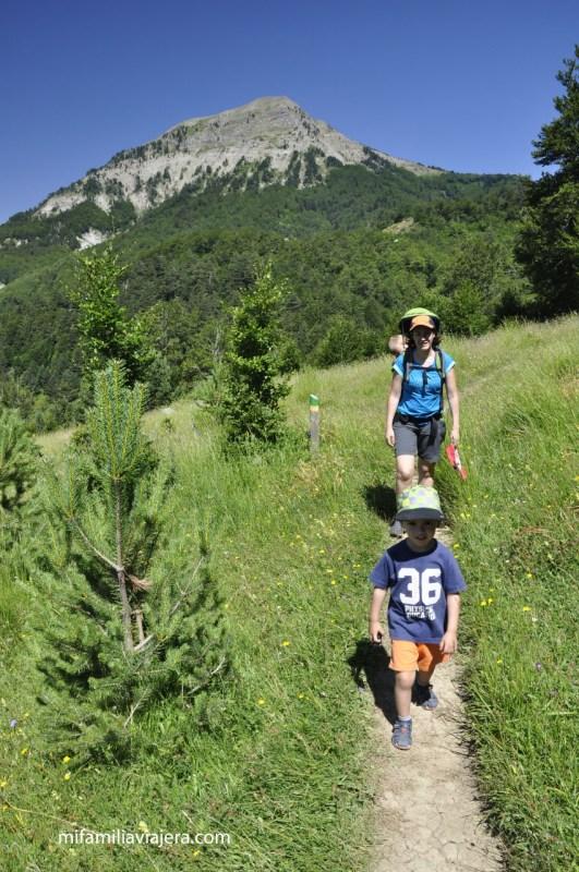 Bosque de Gamueta, Pirineo, Aragón