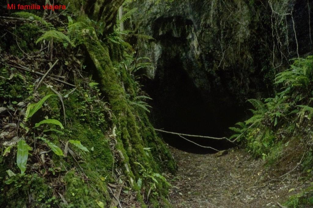 Ruta de la Huella del Oro, Navelgas