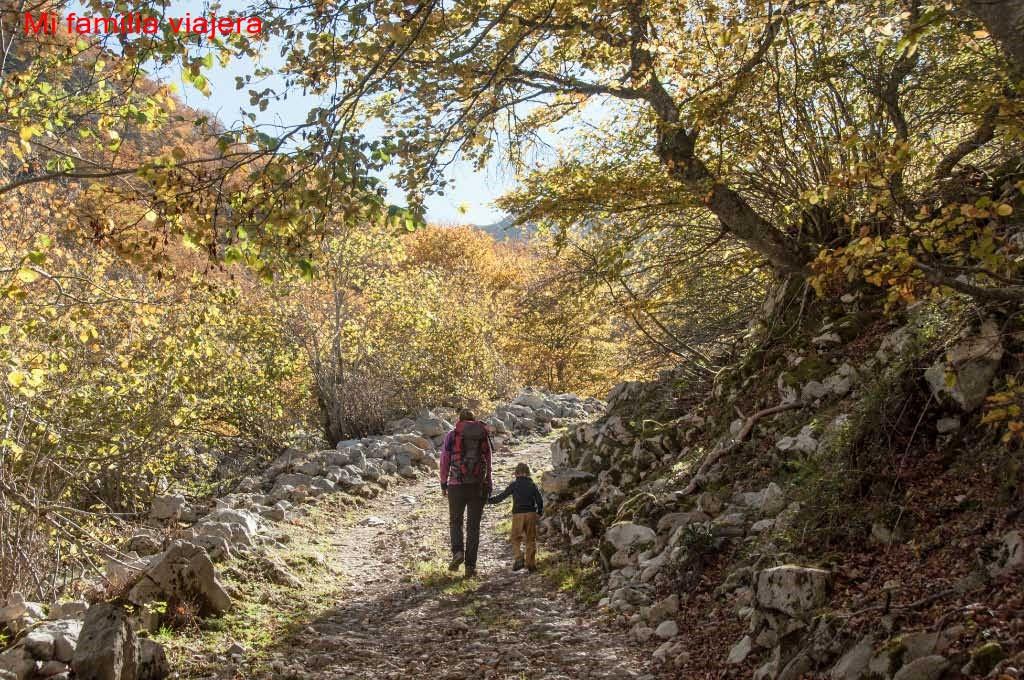 Brañagallones, Parque Natural Redes, Asturias