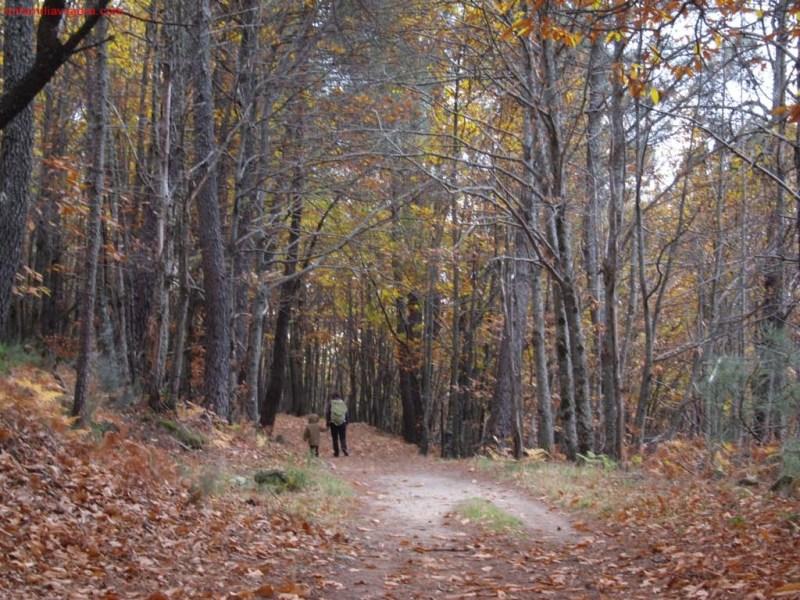Senda Entre Ríos y Bosques, San Martín de Trevejo, Cáceres