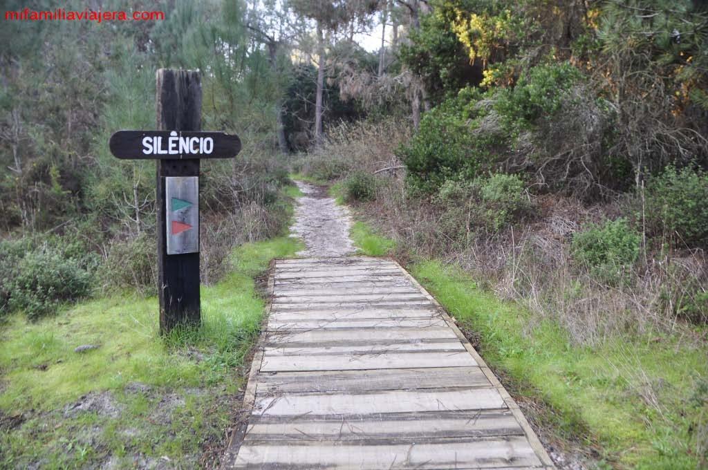 Dunas de San Jacinto, Aveiro, Portugal
