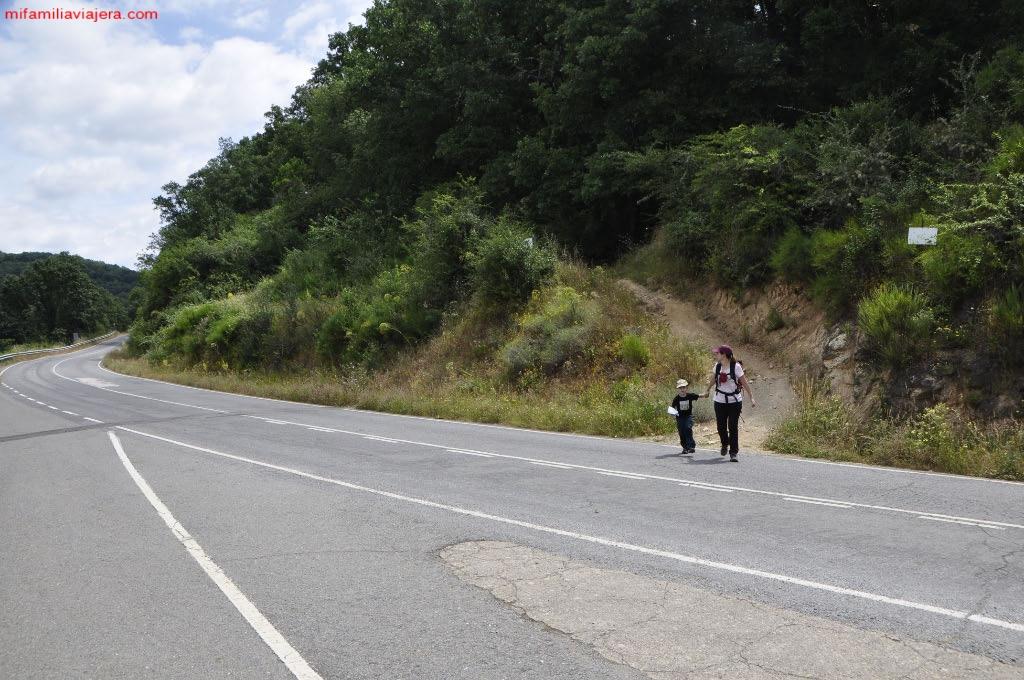 Cruce carretera SA-225