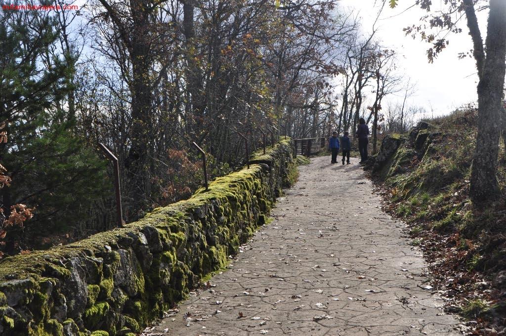 Inicio ruta Senda de los Castaños Centenarios