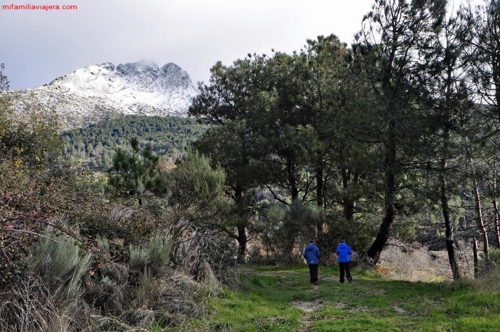 Castañar de las Huertas con el pico Torozo de fondo