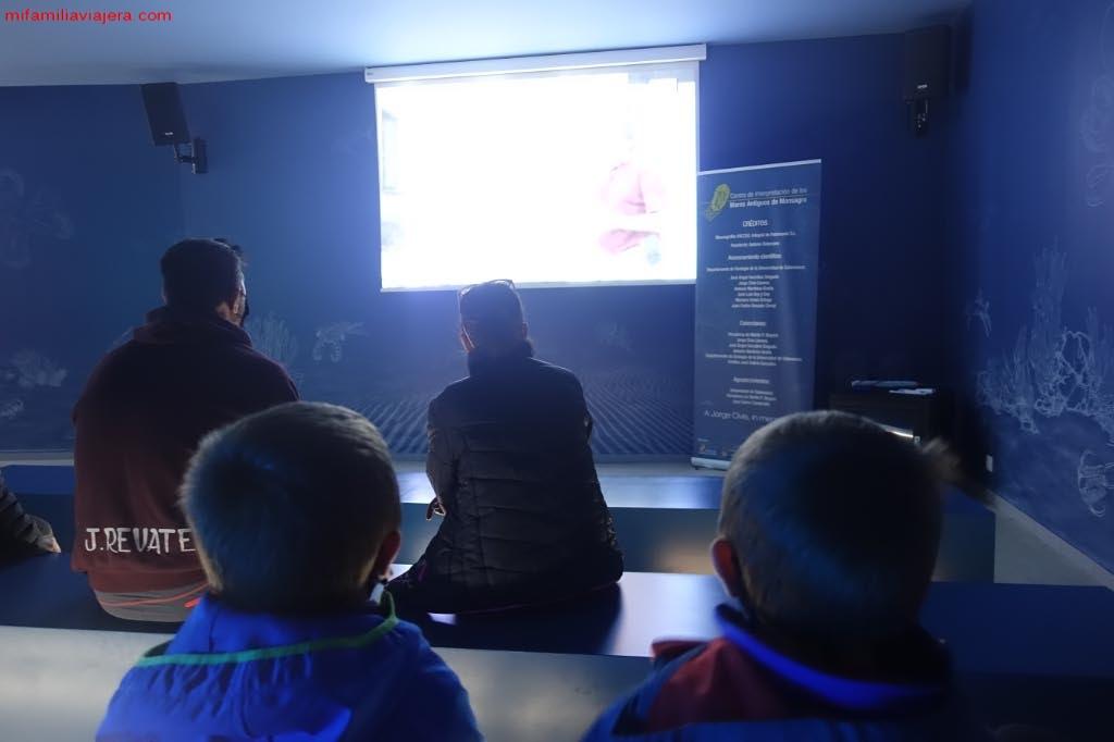 Audiovisual Museo de los Mares Antiguos