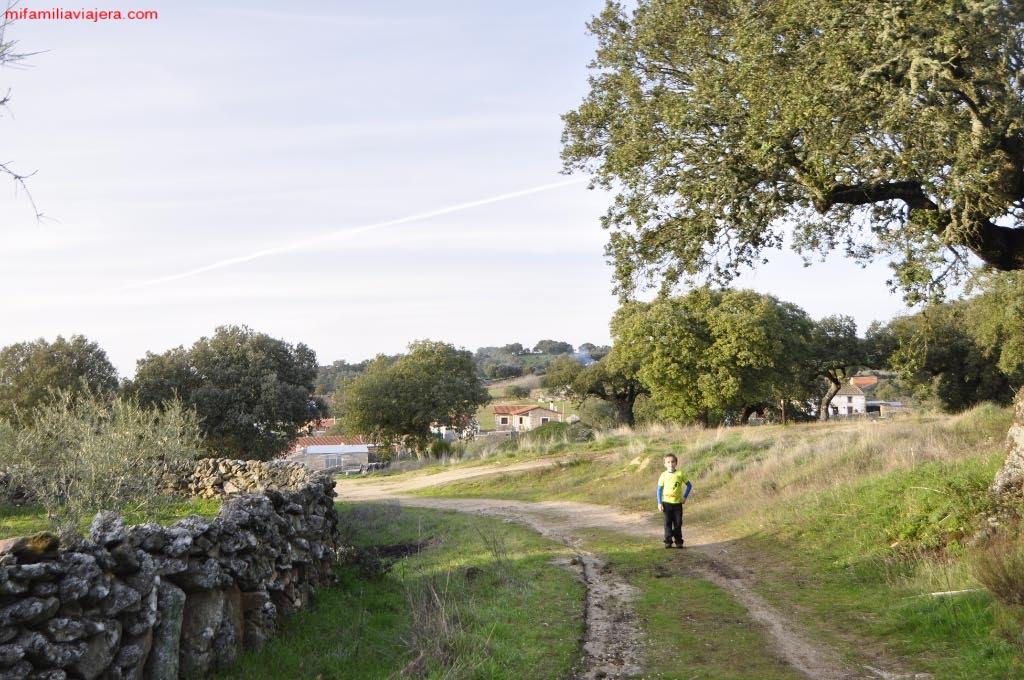 Camino agrícola Mámoles