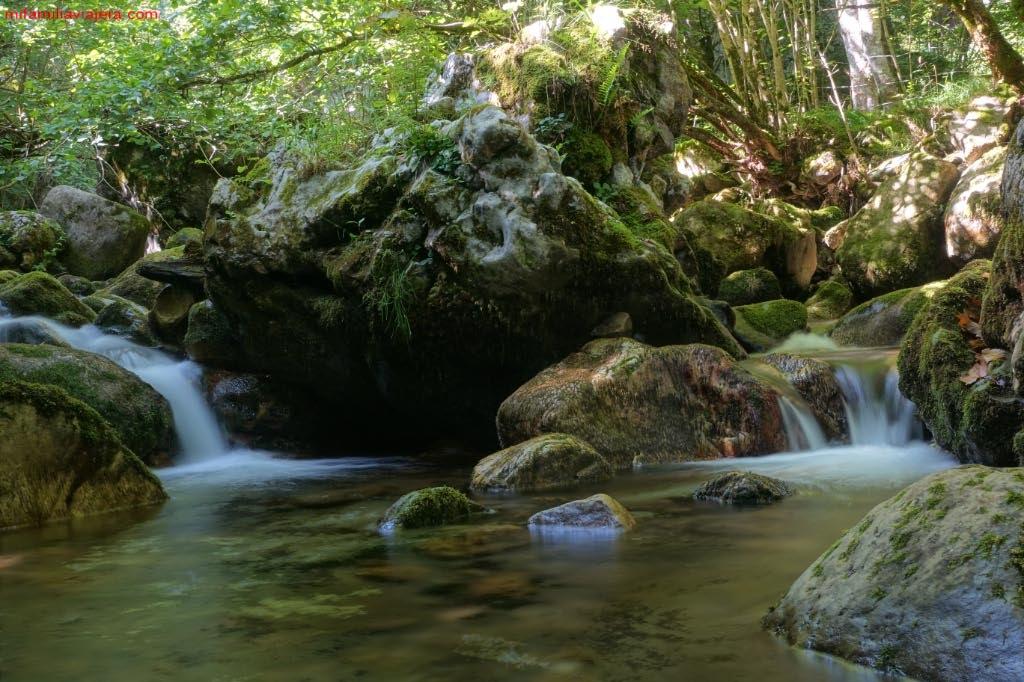 Arroyo de Los Arrudos