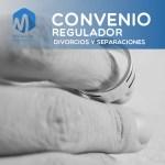 convenio regulador