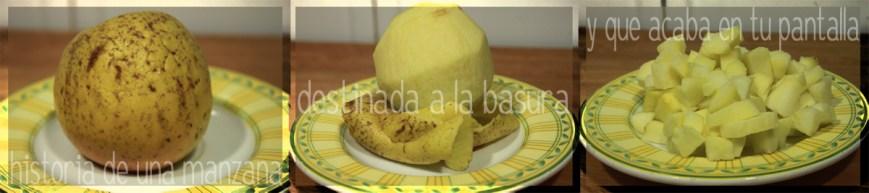 Lombarda braseada PaP