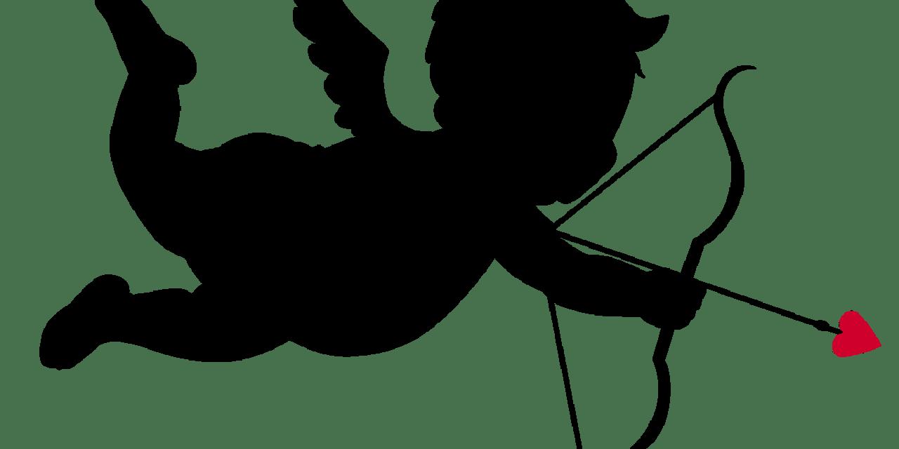 Mispresentation in Online Dating