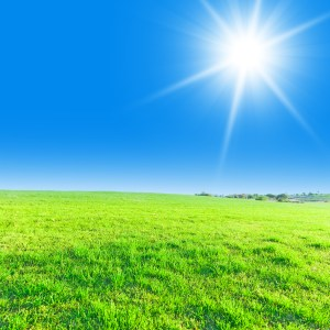bright sun in blue sky over endless green grass