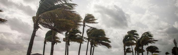 Florida Hurricane Policy