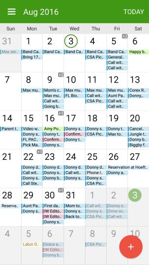 Google Calendar Overload
