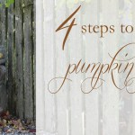 Simple Fall Planters {in four steps}