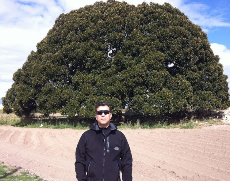 El autor delante del Ficus Centenario situado en la Vereda de los Mazones.